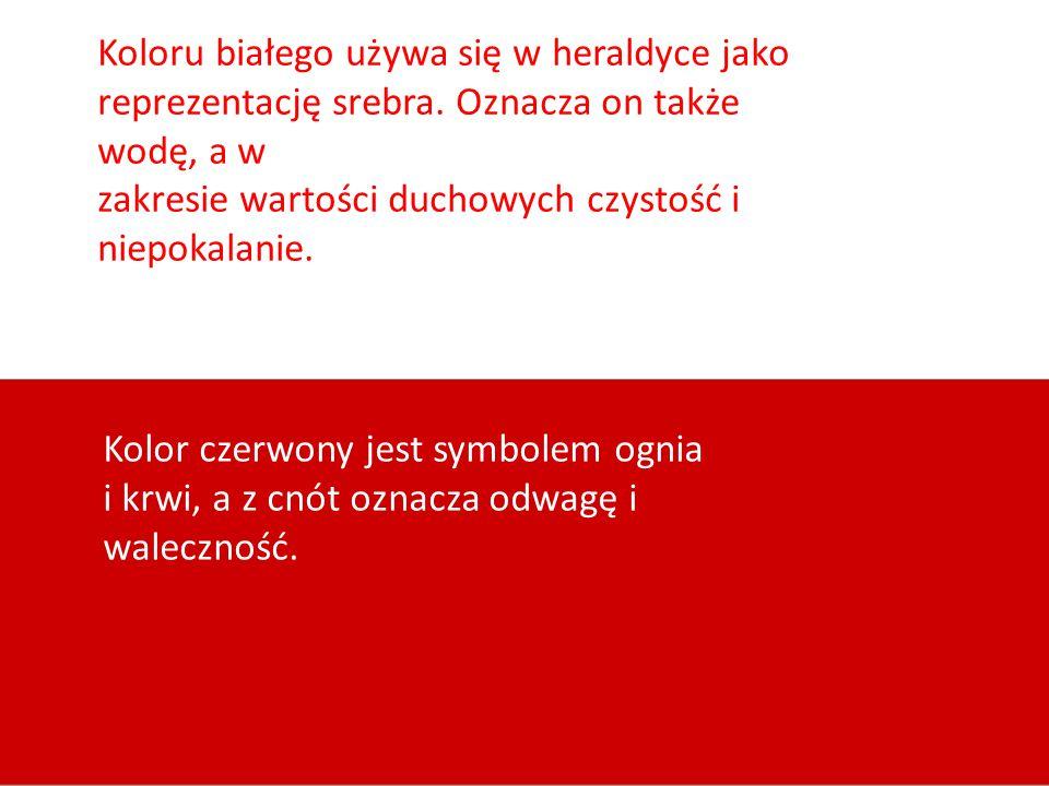 Historia polskiej flagi.