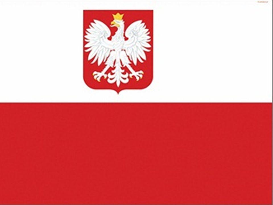 Aktualnie flagę państwową z godłem Rzeczypospolitej Polskiej podnoszą: *przedstawicielstwa dyplomatyczne, urzędy konsularne oraz inne oficjalne przedstawicielstwa i misje za granicą na budynkach lub przed budynkami ich siedzib urzędowych, a także kierownicy tych przedstawicielstw, urzędów i misji.