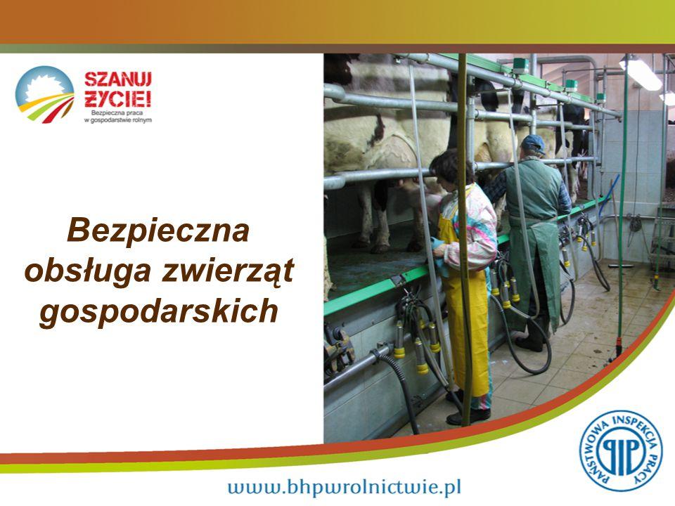 12 Przy pracy ze zwierzętami należy stosować zalecane środki ochrony osobistej tj.