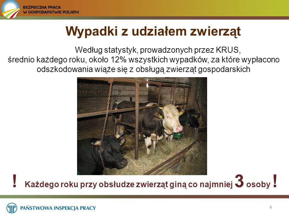 5 Udział dzieci poniżej 16 roku życia przy pracach związanych z obsługą zwierząt nie jest bezpieczny.