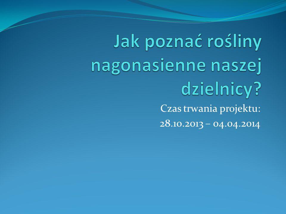 Czas trwania projektu: 28.10.2013 – 04.04.2014