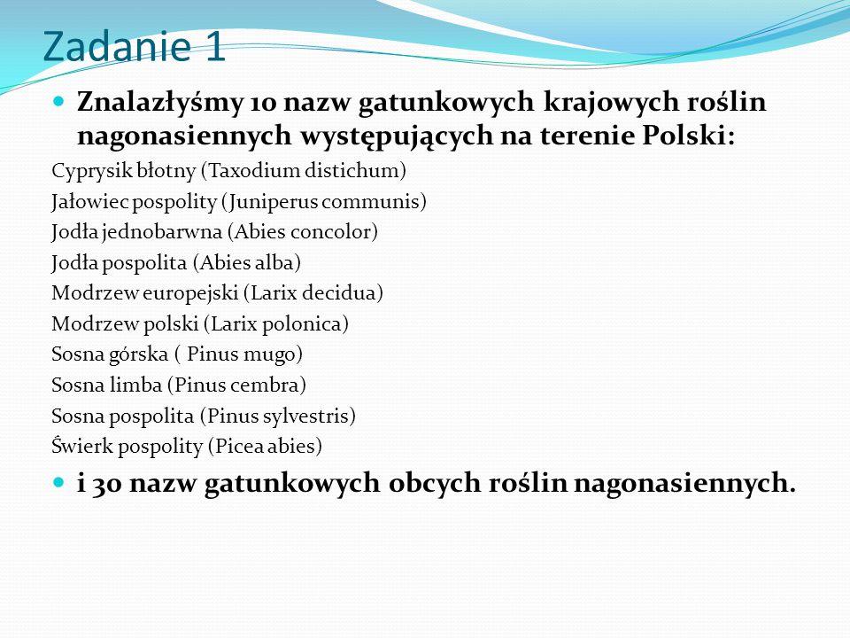 Zadanie 1 Znalazłyśmy 10 nazw gatunkowych krajowych roślin nagonasiennych występujących na terenie Polski: Cyprysik błotny (Taxodium distichum) Jałowi