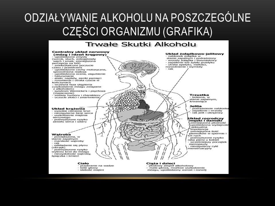 ODZIAŁYWANIE ALKOHOLU NA POSZCZEGÓLNE CZĘŚCI ORGANIZMU (GRAFIKA)