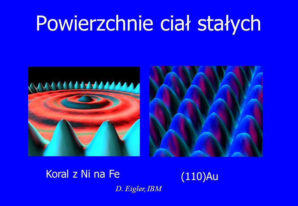 Powierzchnie ciał stałych Koral z Ni na Fe (110)Au D. Eigler, IBM