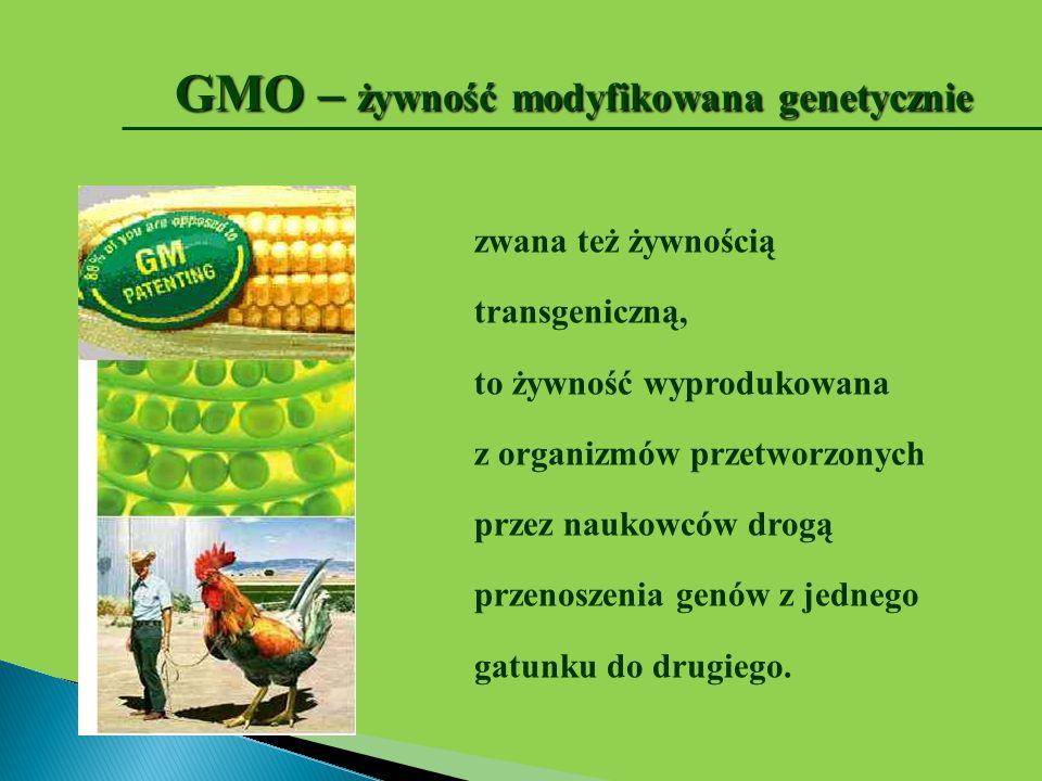GMO – żywność modyfikowana genetycznie zwana też żywnością transgeniczną, to żywność wyprodukowana z organizmów przetworzonych przez naukowców drogą p