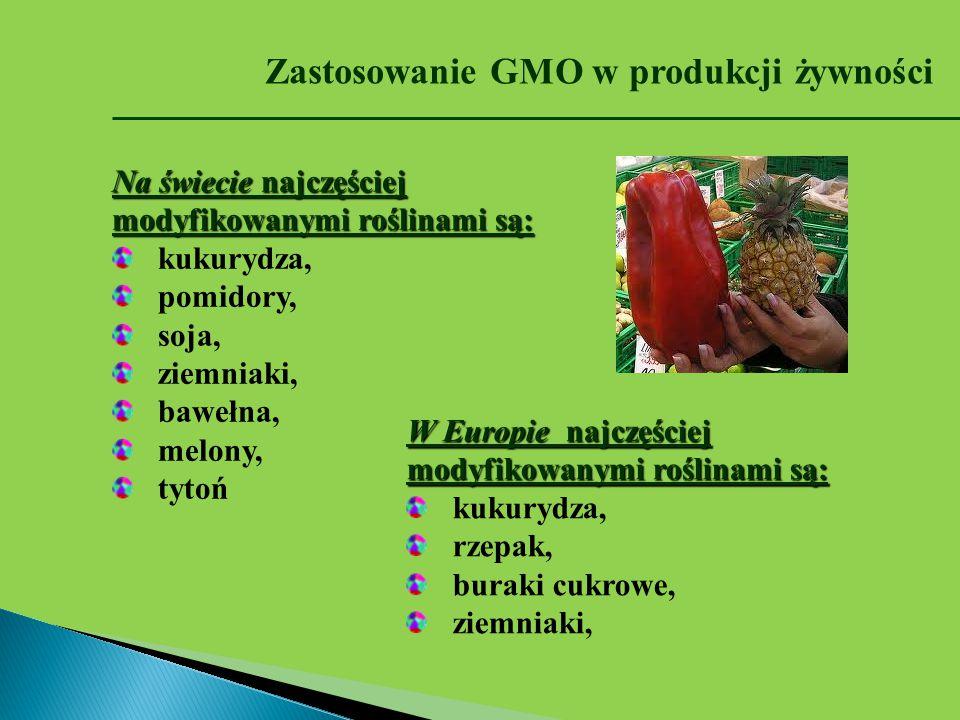 Zastosowanie GMO w produkcji żywności Na świecie najczęściej modyfikowanymi roślinami są: kukurydza, pomidory, soja, ziemniaki, bawełna, melony, tytoń