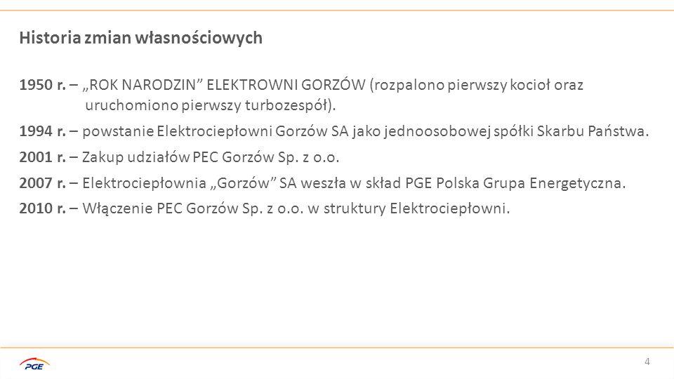 PGE GiEK SA Oddział Elektrociepłownia Gorzów prowadzi działalność gospodarczą na podstawie koncesji udzielonych przez Prezesa Urzędu Regulacji Energetyki, w zakresie:  wytwarzania energii elektrycznej,  wytwarzania ciepła,  przesyłu i dystrybucji ciepła.