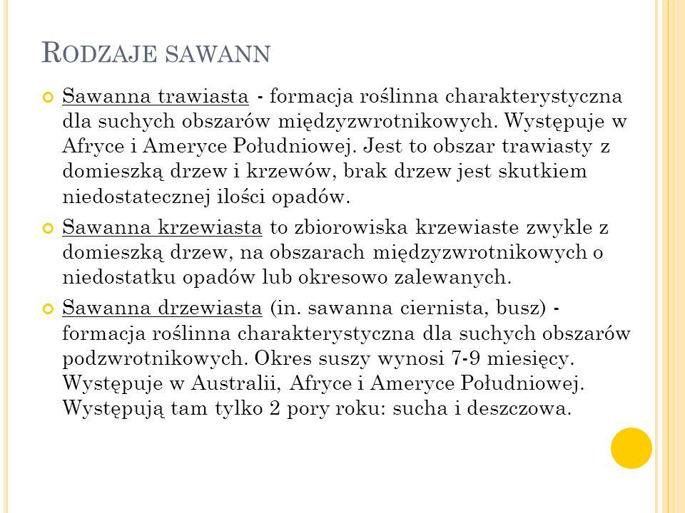 R ODZAJE SAWANN Sawanna trawiasta - formacja roślinna charakterystyczna dla suchych obszarów międzyzwrotnikowych. Występuje w Afryce i Ameryce Południ