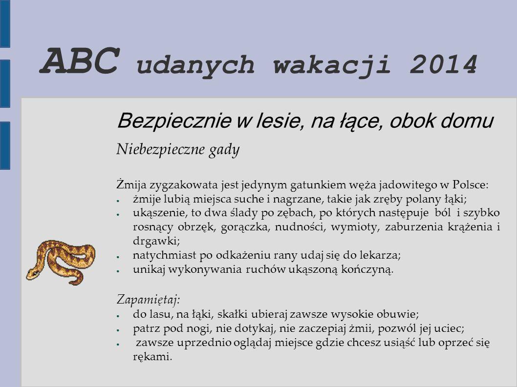 ABC udanych wakacji 2014 Bezpiecznie w lesie, na łące, obok domu Niebezpieczne gady Żmija zygzakowata jest jedynym gatunkiem węża jadowitego w Polsce: