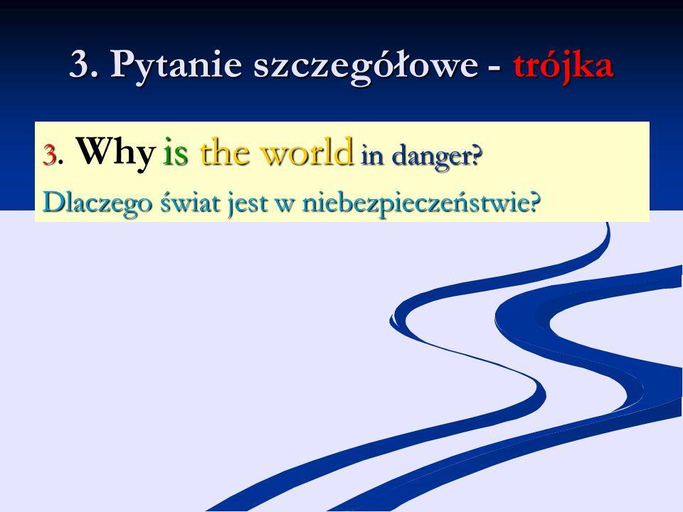 3. Pytanie szczegółowe - trójka 3. is the world in danger? 3. Why is the world in danger? Dlaczego świat jest w niebezpieczeństwie?