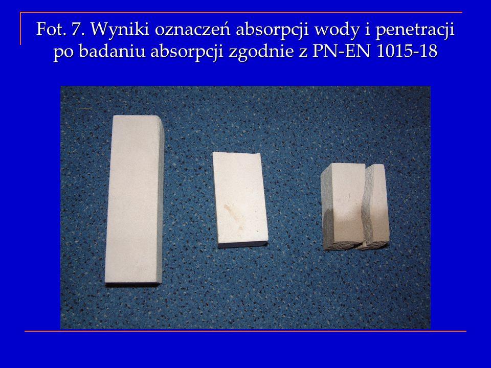 Fot. 7. Wyniki oznaczeń absorpcji wody i penetracji po badaniu absorpcji zgodnie z PN-EN 1015-18