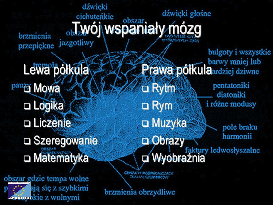 3 Twój wspaniały mózg Lewa półkula  Mowa  Logika  Liczenie  Szeregowanie  Matematyka Prawa półkula  Rytm  Rym  Muzyka  Obrazy  Wyobraźnia