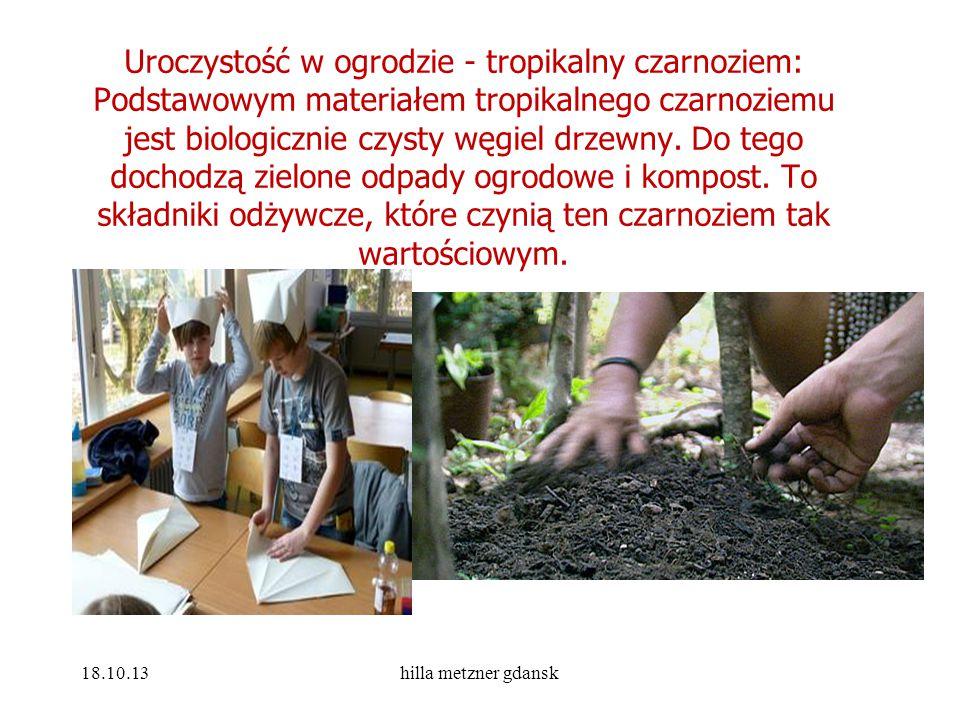 Uroczystość w ogrodzie - tropikalny czarnoziem: Podstawowym materiałem tropikalnego czarnoziemu jest biologicznie czysty węgiel drzewny. Do tego docho