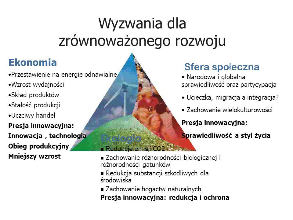 Ekonomia Przestawienie na energie odnawialne Wzrost wydajności Skład produktów Stałość produkcji Uczciwy handel Presja innowacyjna: Innowacja, technol