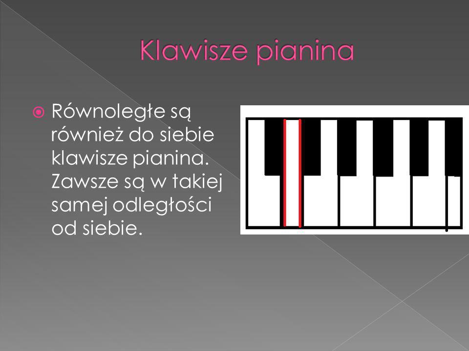 RRównoległe są również do siebie klawisze pianina. Zawsze są w takiej samej odległości od siebie.
