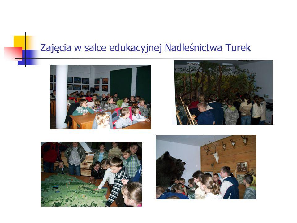 Zajęcia w salce edukacyjnej Nadleśnictwa Turek