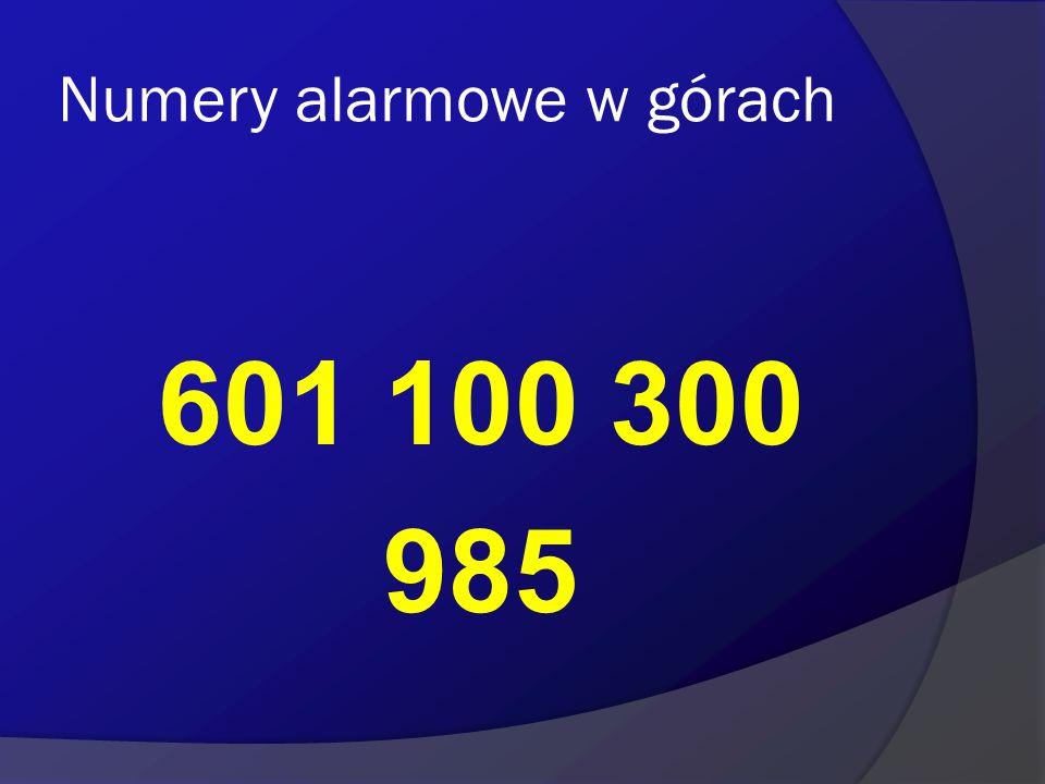 Numery alarmowe w górach 601 100 300 985