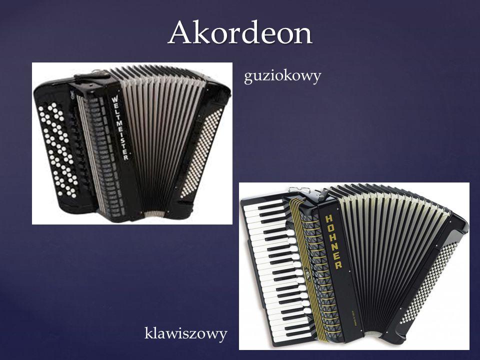 Akordeon guziokowy klawiszowy