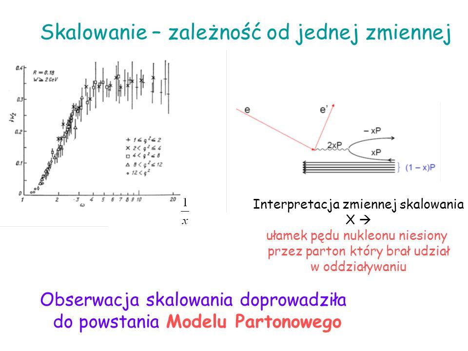Skalowanie – zależność od jednej zmiennej Interpretacja zmiennej skalowania X  ułamek pędu nukleonu niesiony przez parton który brał udział w oddział