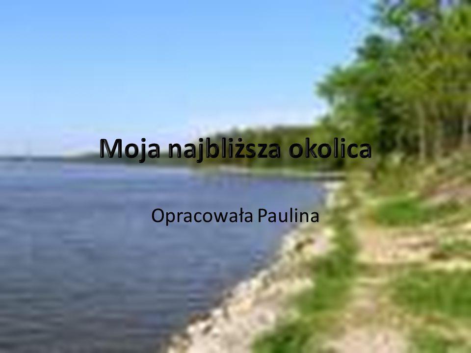 Opracowała Paulina