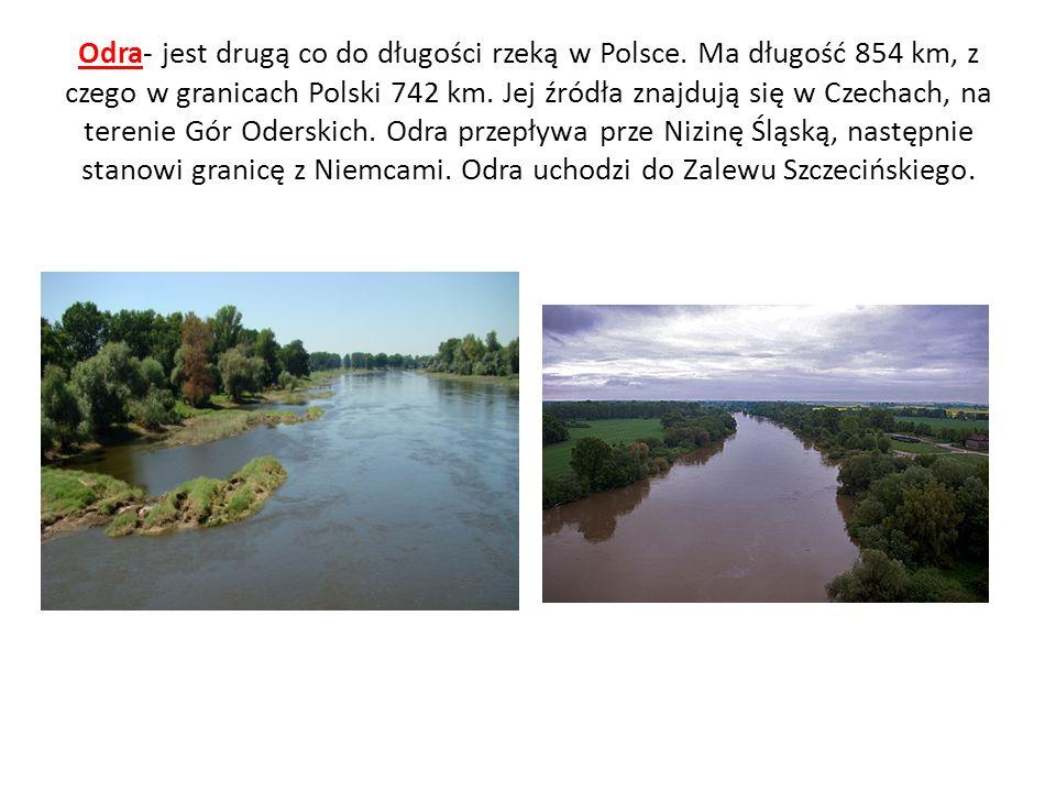 Odra- jest drugą co do długości rzeką w Polsce. Ma długość 854 km, z czego w granicach Polski 742 km. Jej źródła znajdują się w Czechach, na terenie G