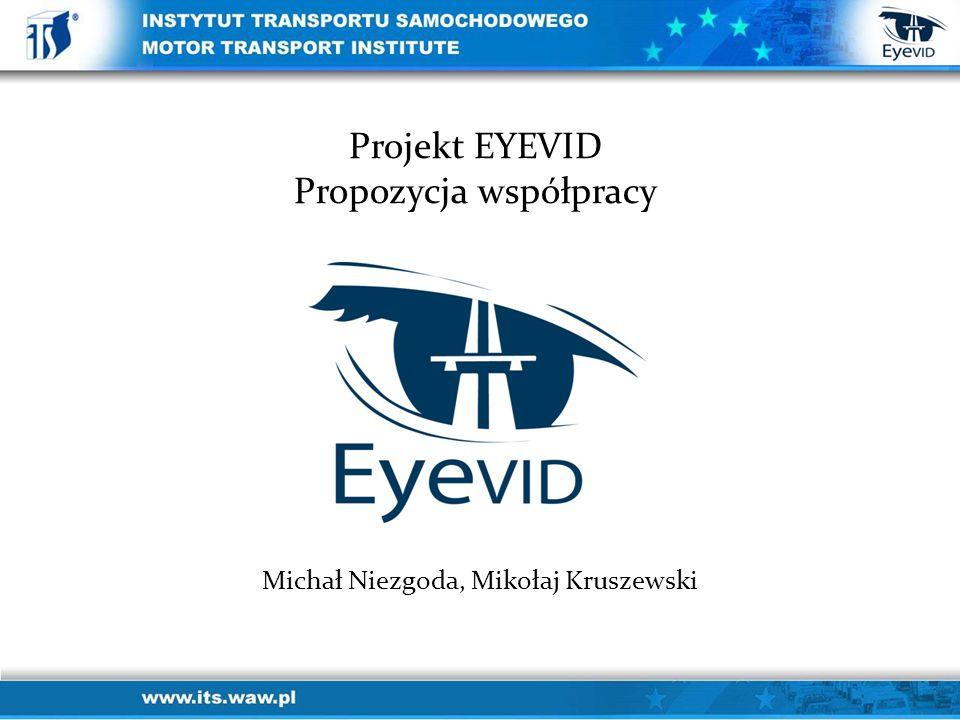 Michał Niezgoda, Mikołaj Kruszewski Projekt EYEVID Propozycja współpracy
