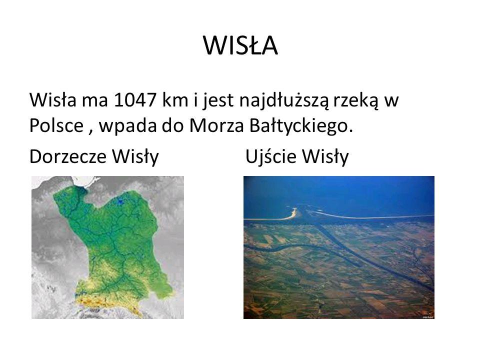 WISŁA Wisła ma 1047 km i jest najdłuższą rzeką w Polsce, wpada do Morza Bałtyckiego. Dorzecze Wisły Ujście Wisły