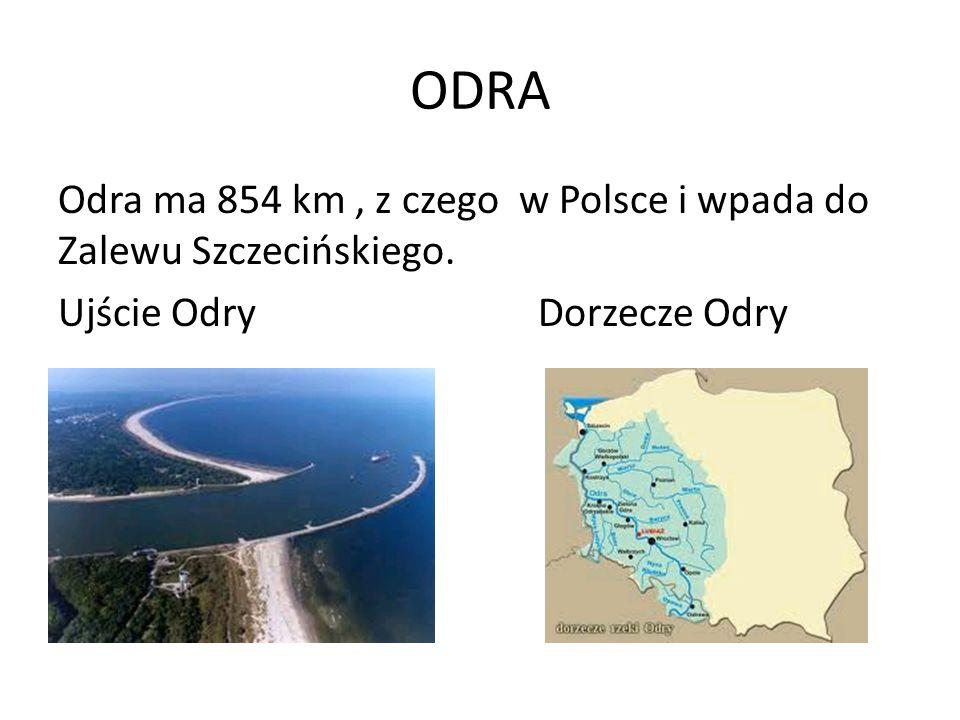 ODRA Odra ma 854 km, z czego w Polsce i wpada do Zalewu Szczecińskiego. Ujście OdryDorzecze Odry