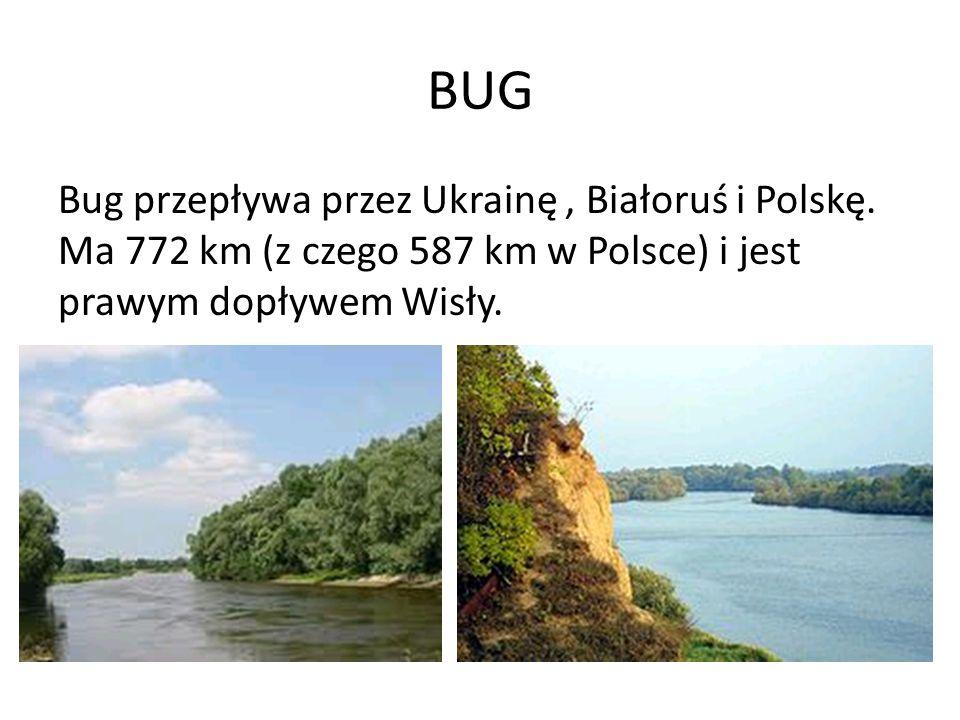 BUG Bug przepływa przez Ukrainę, Białoruś i Polskę. Ma 772 km (z czego 587 km w Polsce) i jest prawym dopływem Wisły.