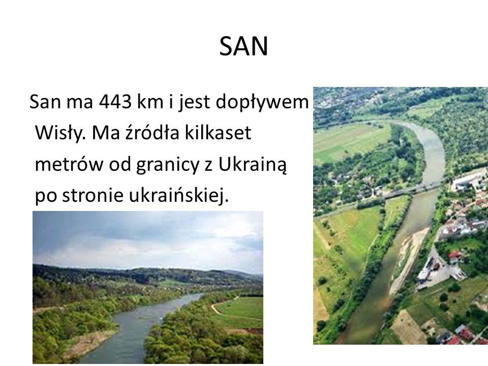 SAN San ma 443 km i jest dopływem Wisły. Ma źródła kilkaset metrów od granicy z Ukrainą po stronie ukraińskiej.