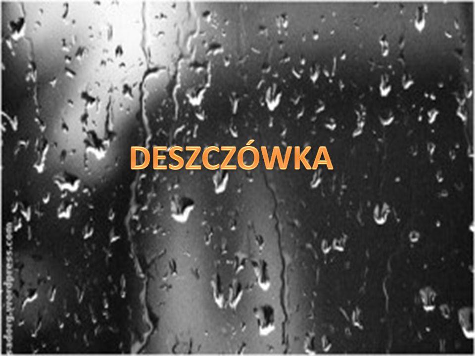 Pytanie 9 : Czy woda deszczowa nadaje się do picia ?