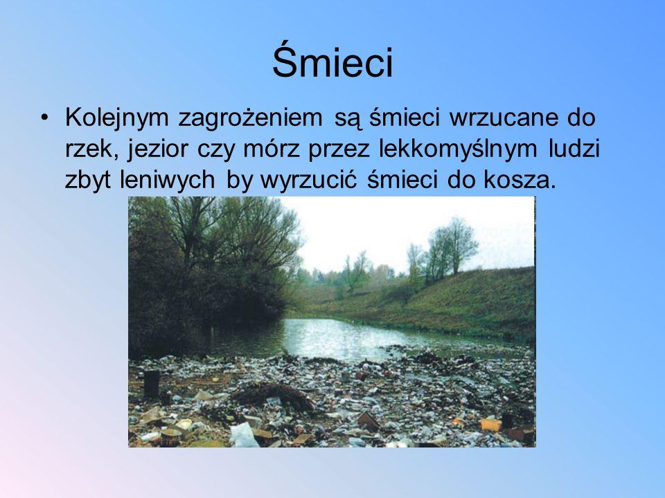 Śmieci Kolejnym zagrożeniem są śmieci wrzucane do rzek, jezior czy mórz przez lekkomyślnym ludzi zbyt leniwych by wyrzucić śmieci do kosza. Śmieci zal