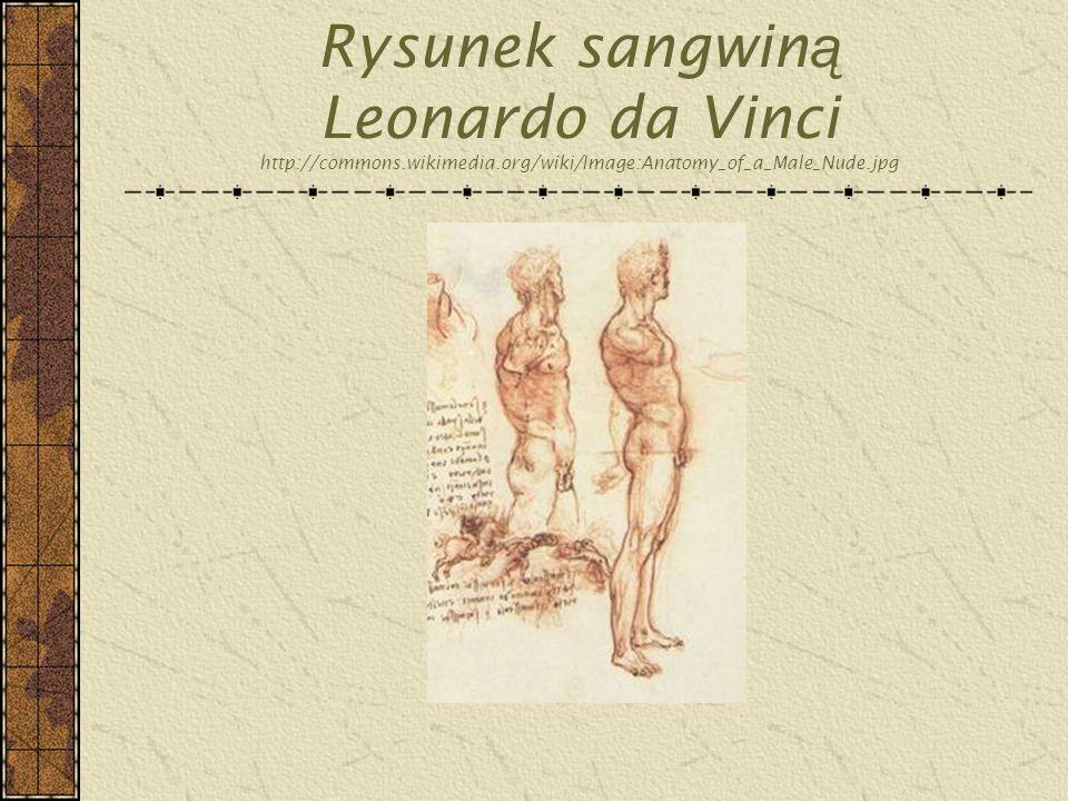 Rysunek sangwin ą Leonardo da Vinci http://commons.wikimedia.org/wiki/Image:Anatomy_of_a_Male_Nude.jpg