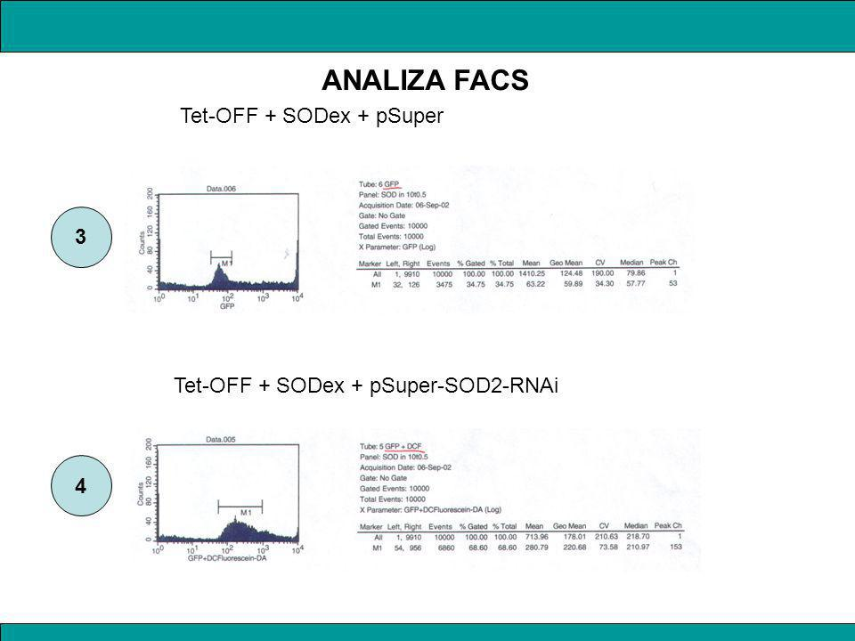 Tet-OFF + SODex + pSuper Tet-OFF + SODex + pSuper-SOD2-RNAi 3 4 ANALIZA FACS