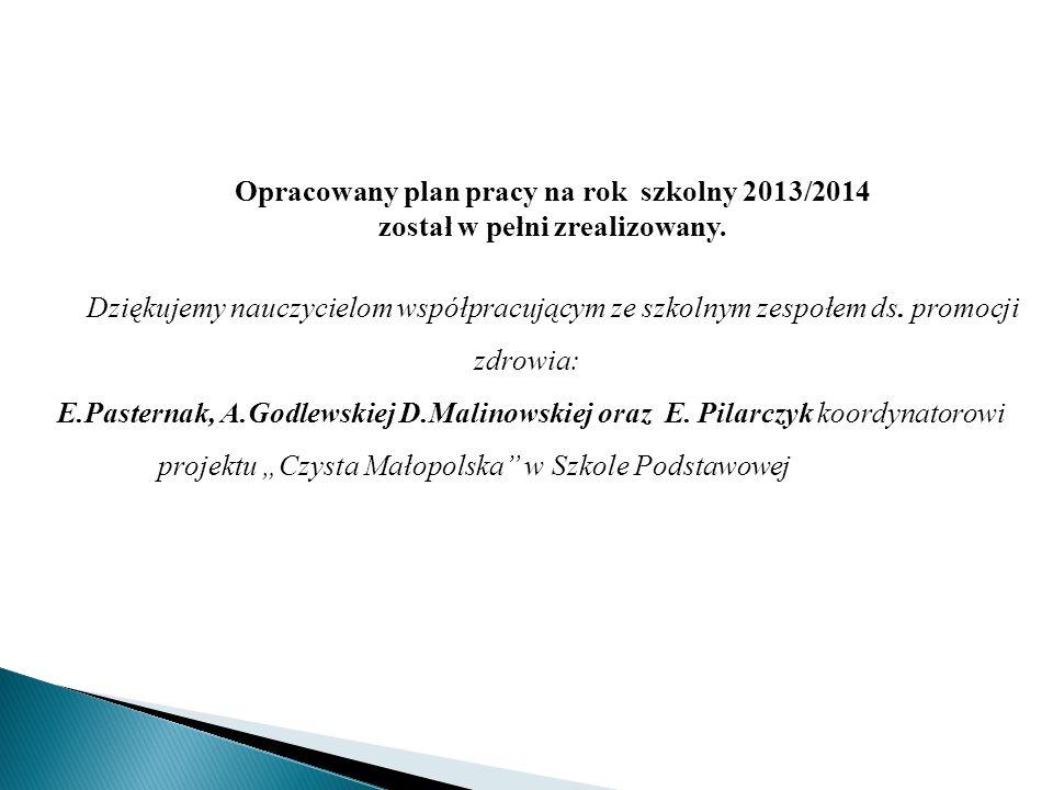 Opracowany plan pracy na rok szkolny 2013/2014 został w pełni zrealizowany. Dziękujemy nauczycielom współpracującym ze szkolnym zespołem ds. promocji