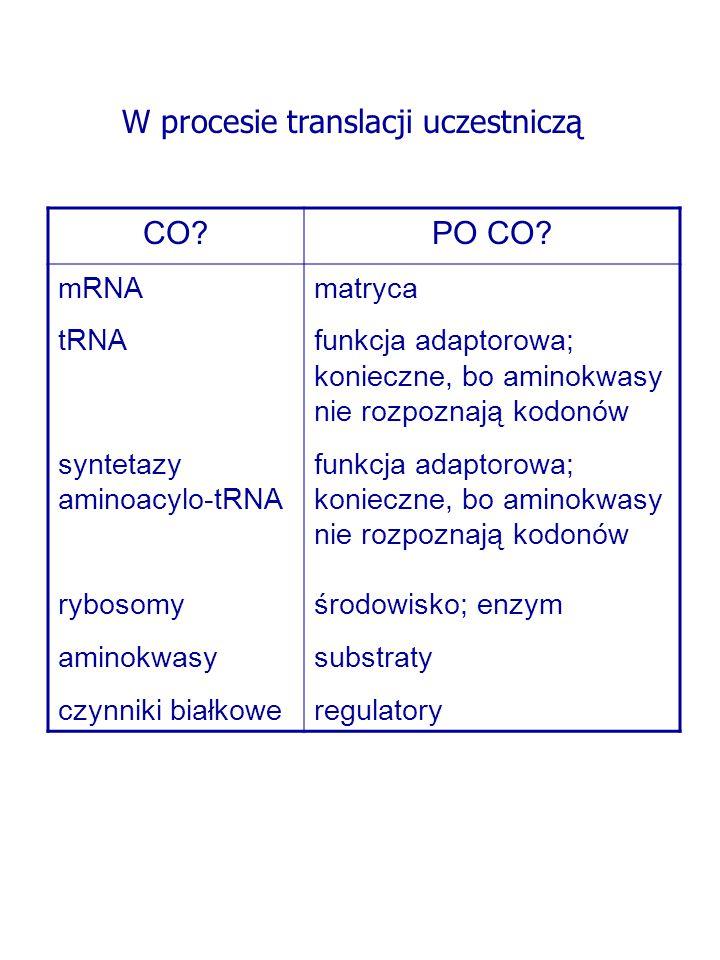 """Receptor SRP """"przekazuje rybosom syntetyzujący białko np."""