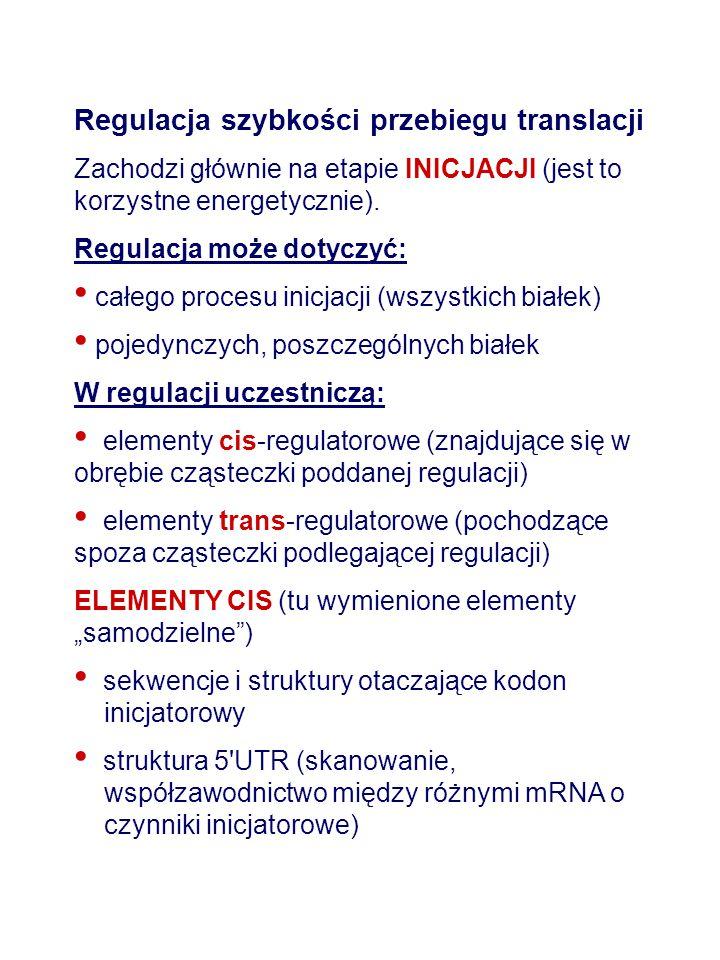 Regulacja szybkości przebiegu translacji Zachodzi głównie na etapie INICJACJI (jest to korzystne energetycznie). Regulacja może dotyczyć: całego proce