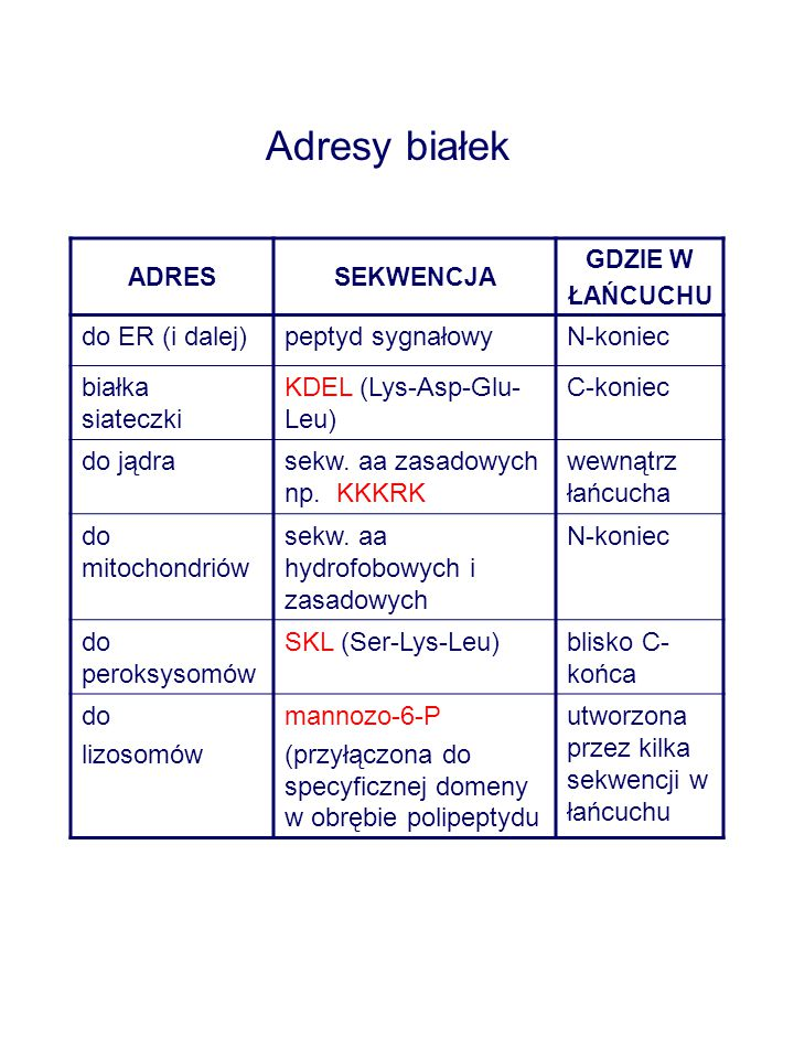 ADRESSEKWENCJA GDZIE W ŁAŃCUCHU do ER (i dalej)peptyd sygnałowyN-koniec białka siateczki KDEL (Lys-Asp-Glu- Leu) C-koniec do jądrasekw. aa zasadowych