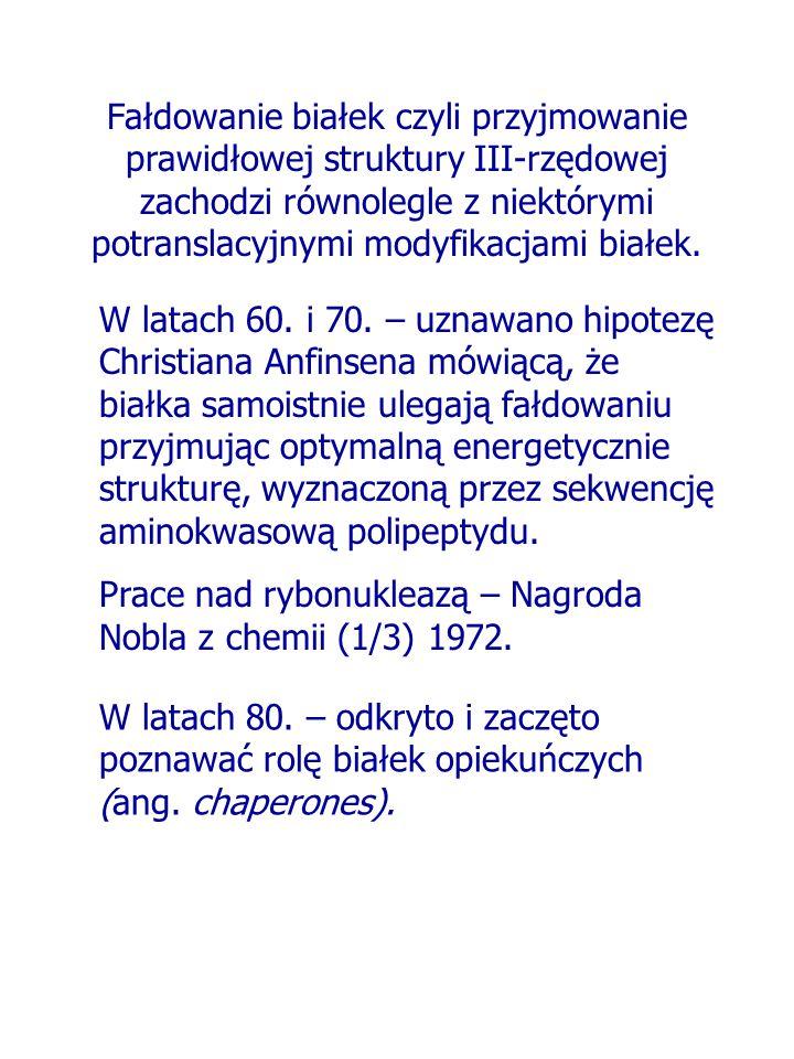 Fałdowanie białek czyli przyjmowanie prawidłowej struktury III-rzędowej zachodzi równolegle z niektórymi potranslacyjnymi modyfikacjami białek. W lata