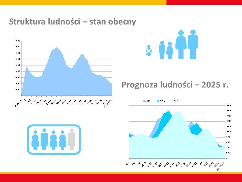 Prognoza ludności – 2025 r. Struktura ludności – stan obecny