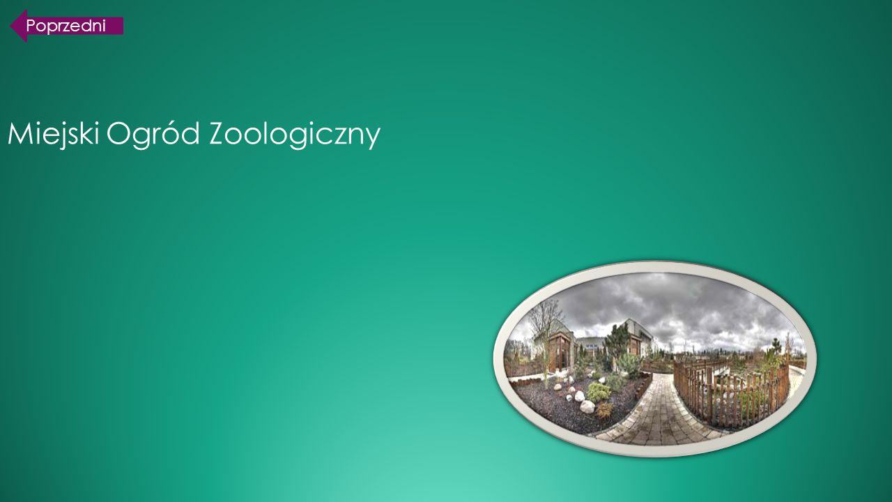 Miejski Ogród Zoologiczny Poprzedni