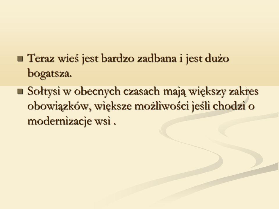 Ocena gminy i sołtysa Pan Paweł dobrze wspomina współprace z sołtysem i gminą.