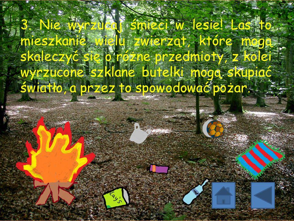 3. Nie wyrzucaj śmieci w lesie! Las to mieszkanie wielu zwierząt, które mogą skaleczyć się o różne przedmioty, z kolei wyrzucone szklane butelki mogą
