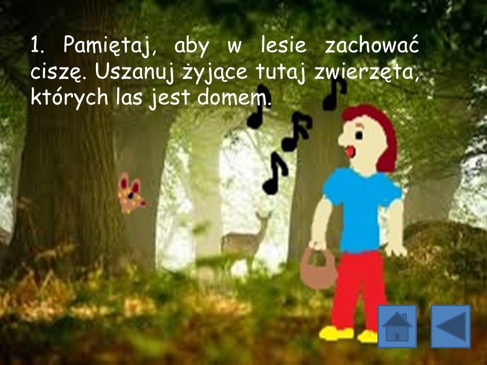 1. Pamiętaj, aby w lesie zachować ciszę. Uszanuj żyjące tutaj zwierzęta, których las jest domem.