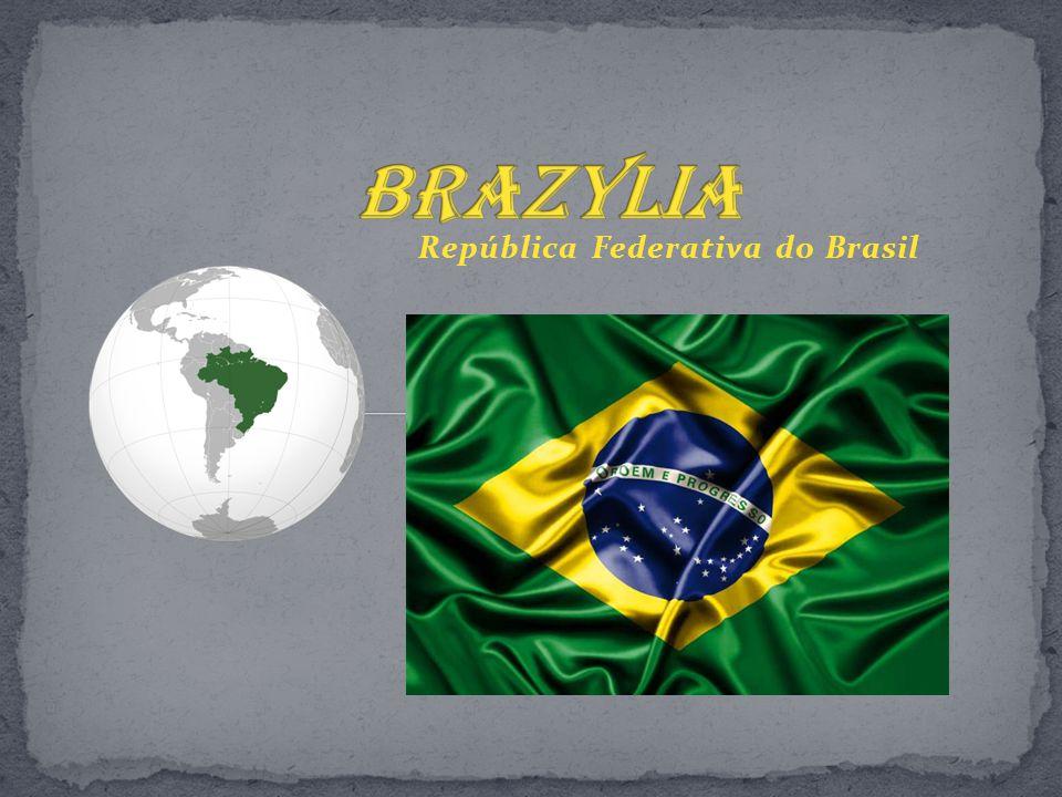 - Zajmuje ponad 47,5% powierzchni Ameryki Południowej.