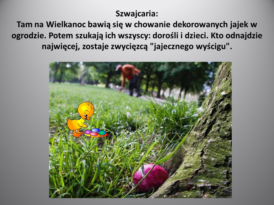 Szwajcaria: Tam na Wielkanoc bawią się w chowanie dekorowanych jajek w ogrodzie. Potem szukają ich wszyscy: dorośli i dzieci. Kto odnajdzie najwięcej,