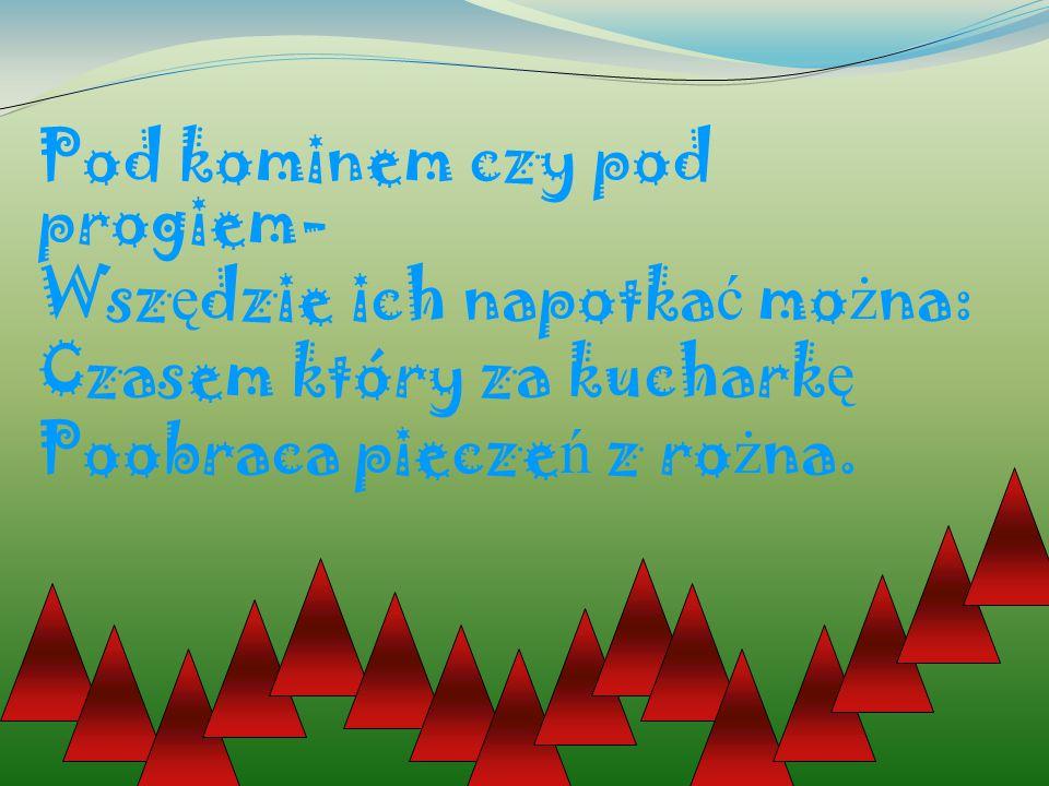 Pod kominem czy pod progiem- Wsz ę dzie ich napotka ć mo ż na: Czasem który za kuchark ę Poobraca piecze ń z ro ż na.