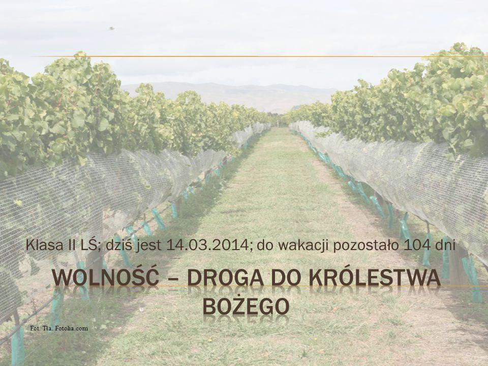 Klasa II LŚ; dziś jest 14.03.2014; do wakacji pozostało 104 dni Fot. Tła. Fotolia.com