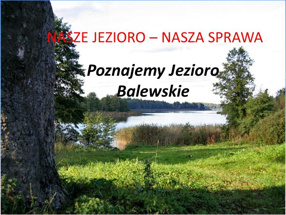 Poznajemy Jezioro Balewskie NASZE JEZIORO – NASZA SPRAWA