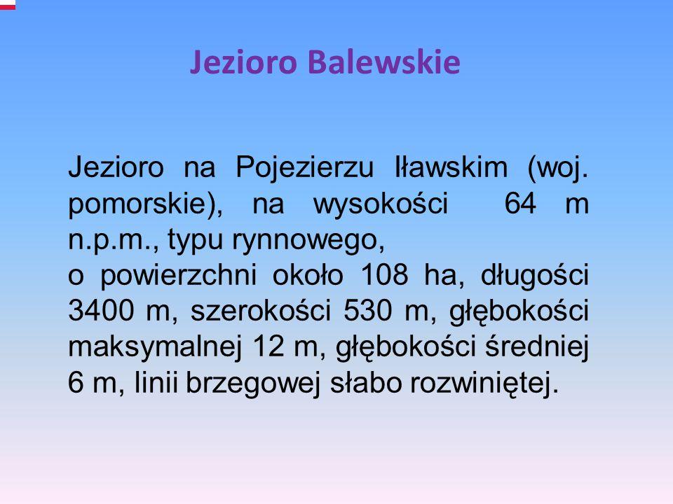 Jezioro na Pojezierzu Iławskim (woj. pomorskie), na wysokości 64 m n.p.m., typu rynnowego, o powierzchni około 108 ha, długości 3400 m, szerokości 530